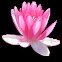 http://www.yoursmileys.ru/ismile/flowers/flower002.png