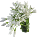 flower092.png